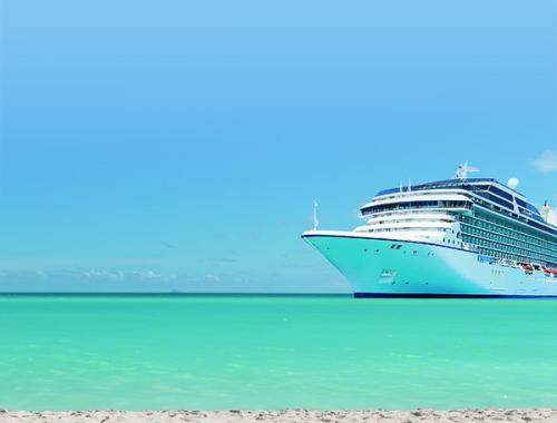 Photograph of cruise ship with beach in foreground